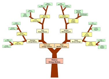 my family trees welcome to ezfamilytree com get your family tree